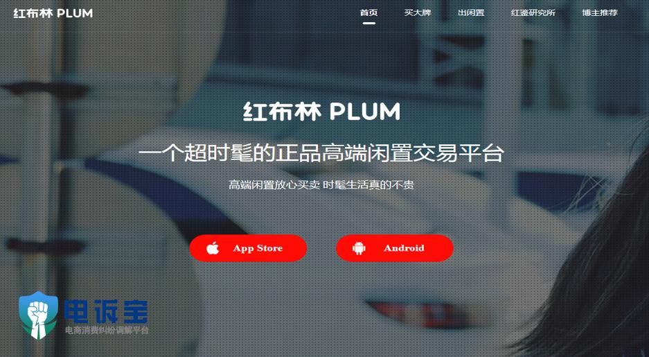 红布林plum.jpg